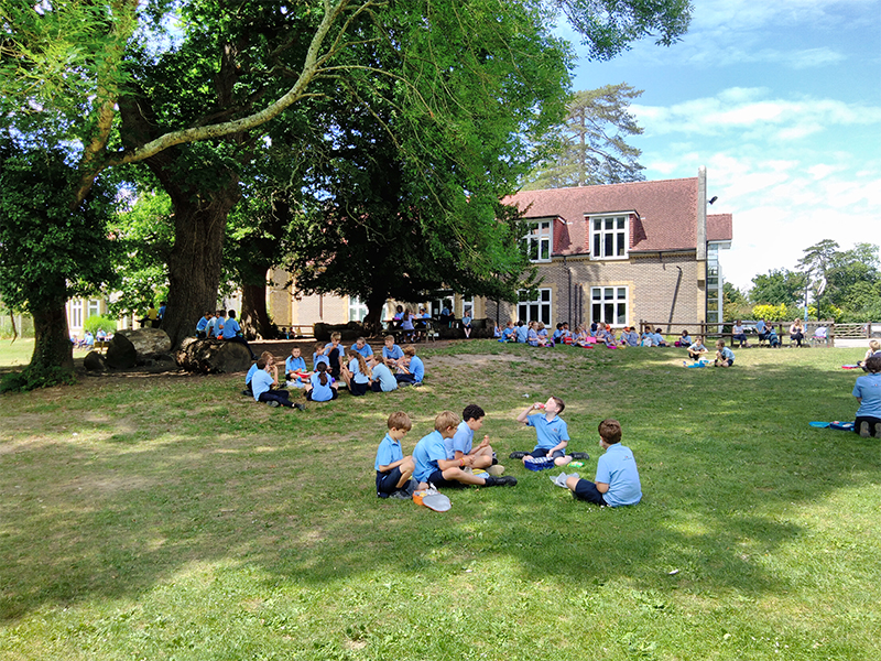 Primary Lunchtime Picnic